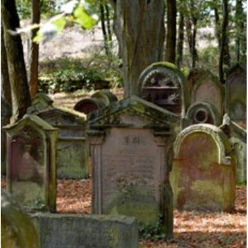 Thumbnail for Der jüdische Friedhof
