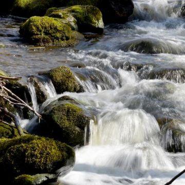 Thumbnail for Die Schmeie von der Quelle bis zur Mündung